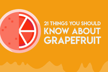 21 Things You Should Know About Grapefruit – An Infographic