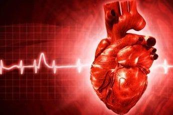 Heart Disease In Women: Fact Vs. Fiction